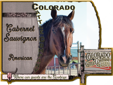 Colorado Cattle Company Guest Ranch - Cabernet